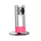 3G-камера видеонаблюдения CleverDog
