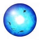 Диск проекционный HomeStar Под водой