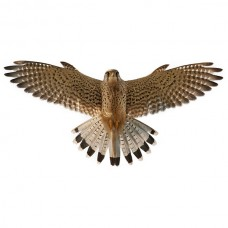 Визуальный отпугиватель птиц Сокол-1